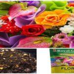 Vitaminas para Flores Conoce los Fertilizantes Naturales y Mas