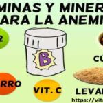 Vitaminas Para Combatir la Anemia en Adultos y Bebes